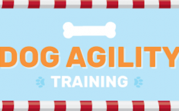 Agility Games to Boost Training